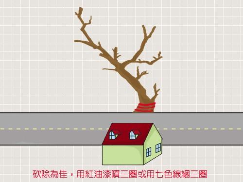 House_52.jpg